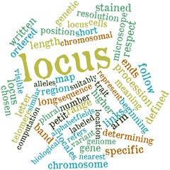 Word cloud for Locus