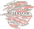 Word cloud for Reservoir