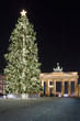 Brandenburg Gate and the Christmas tree.