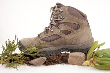 Hiking Boot In Nature