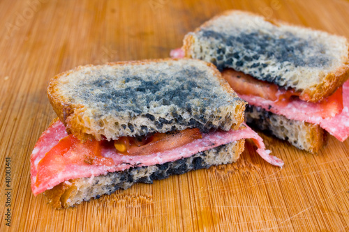 canvas print picture moldy sandwich with salami, tomatoes on a chopping board