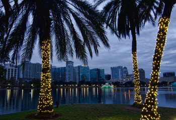 Orlando Skyline at Christmas