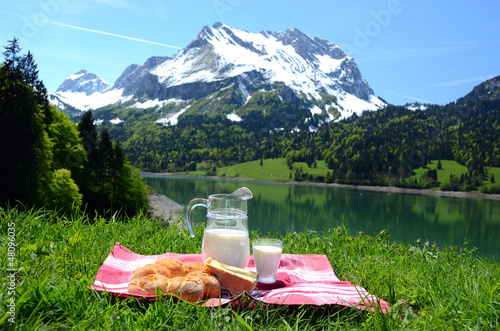 Milk, cheese and bread served at a picnic, Switzerland