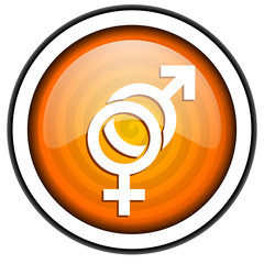 sex orange glossy icon isolated on white background