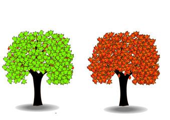 ağaç 3