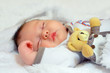 adorable baby newborn sleeping with toy
