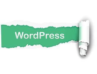 papel roto wordpress
