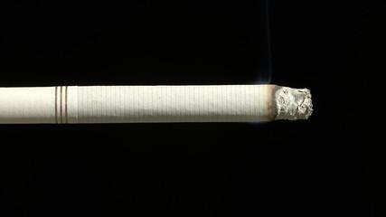Cigarette Timelapse