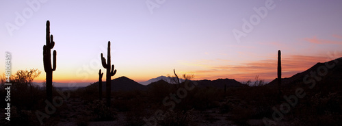 Foto op Plexiglas Zandwoestijn Saguaro Cactus at Sunrise Panoramic