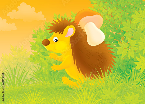 spiny hedgehog carrying a mushroom in a forest