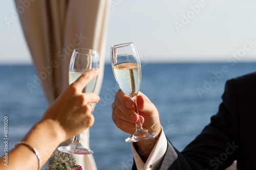 Couple raising wedding toast