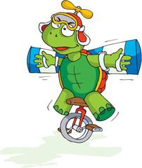 Crazy tortoise