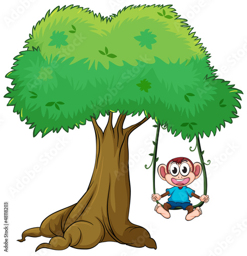 A monkey playing swing on tree