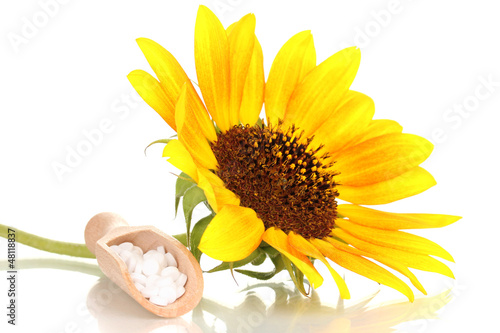 homeopathic tablets and flower isolated on white
