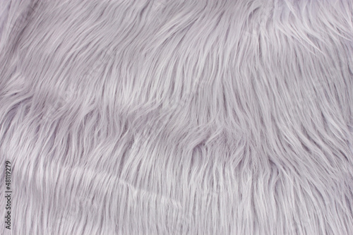 Gray fur texture, close-up.Useful as background