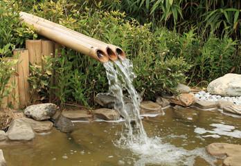 petite source et fontaine de bambous en jardin aquatique