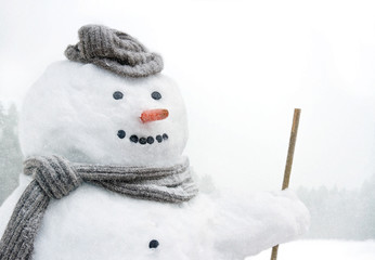 Smiling snowman outdoors in snowfall