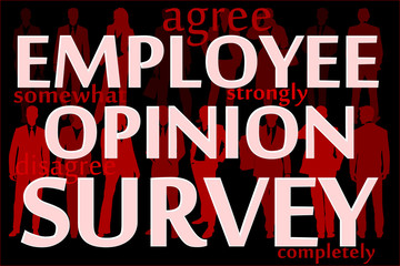 Employee opinion survey