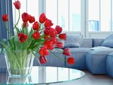 Interior Design Detail: Tulips