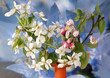 Branch with flowers and blossoms of apple