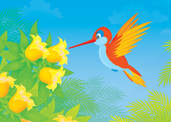humming-bird flying over tropical flowers