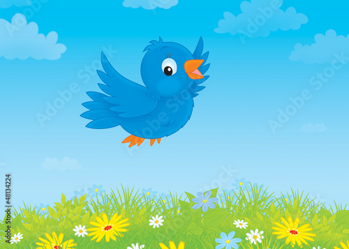 blue bird flying over a meadow with wildflowers