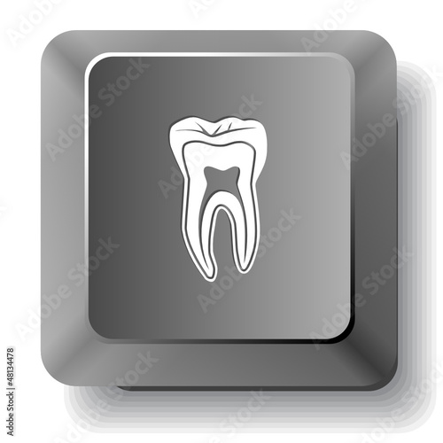 Tooth. Vector computer key.
