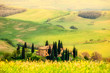 Spring in the Tuscany