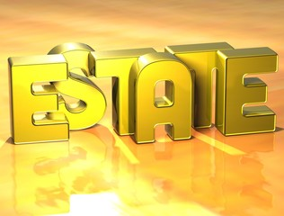 3D Word Estate on yellow background
