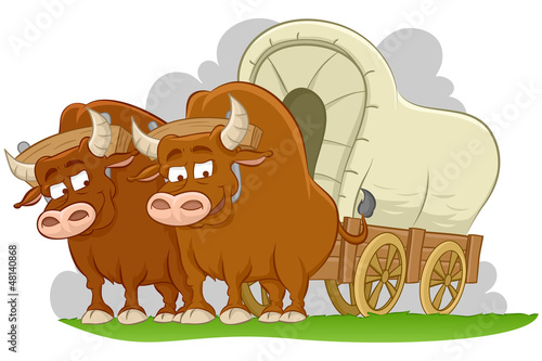 Bulls drawn covered wagon