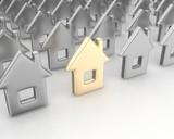 Fototapeta dom - złoto - Obrazy 3D