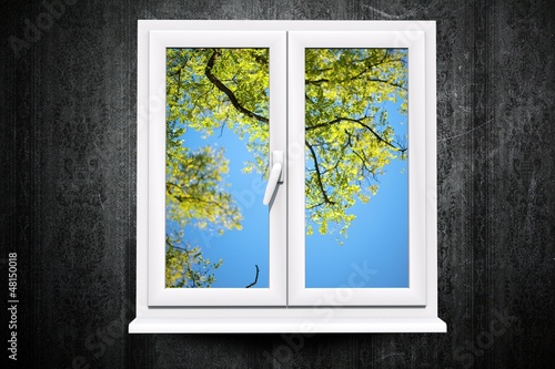 Window to Summer