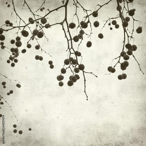 textured old paper background © Tamara Kulikova