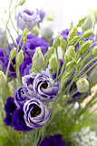 Close-up bouquet of blue flowers