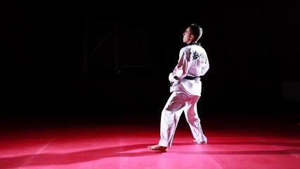 taekwondo athlete performing kicks