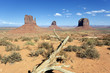 dead wood at Monument Valley