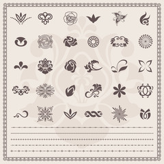 Design elements. Vector set. Floral and ornamental symbols