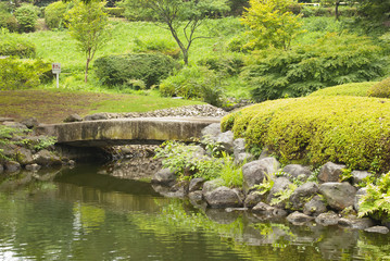 The bridge in Japanese garden