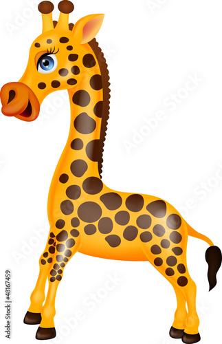 Giraffe cartoon