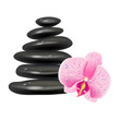 Illustration with massage stones and orchid. White background