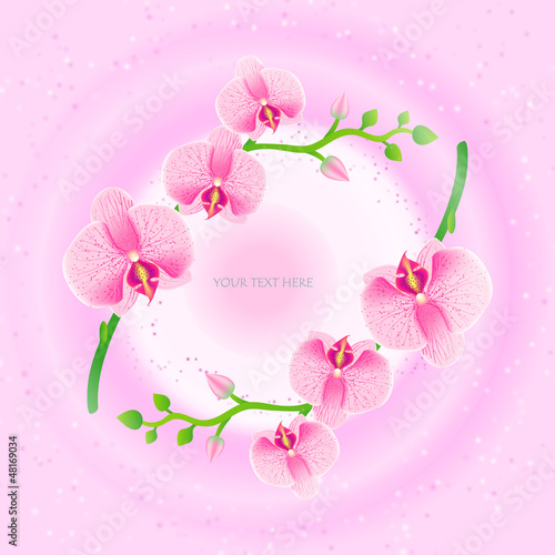 Illustration of frame with pink orchids