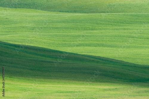 Keuken foto achterwand Olijf Verdi colline