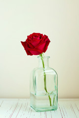 Red rose in bottle on white wooden table