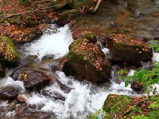 Mountain Creek Water Video