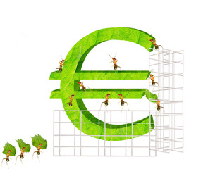 Ants and  euro
