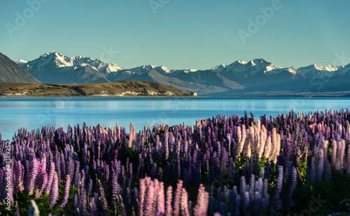 Aluminium Nieuw Zeeland Lake Tekapo with Aroki Mt.Cook, New Zealand