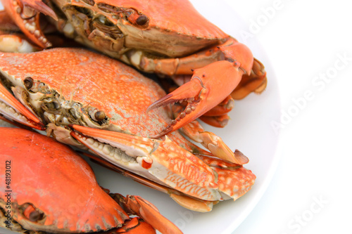cooked crabs on plate