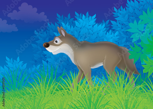 Plexiglas Bosdieren wolf in a night forest