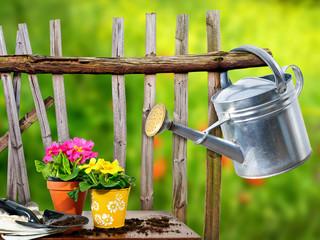 Umtopfen im Garten