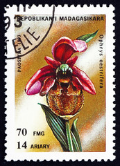 Postage stamp Malagasy 1993 Ophrys Oestrifera, Orchid